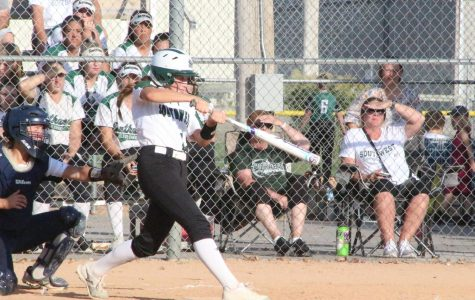 Success in Silver Hawk Softball