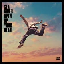 "The album cover for ""Open Up Your Head"". This is the band Sea Girls first album. Picture courtesy of theguardian.com"