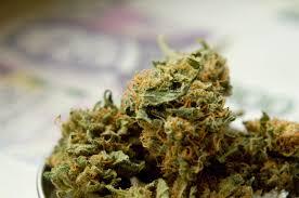 Medical Marijuana Taken Off Ballot