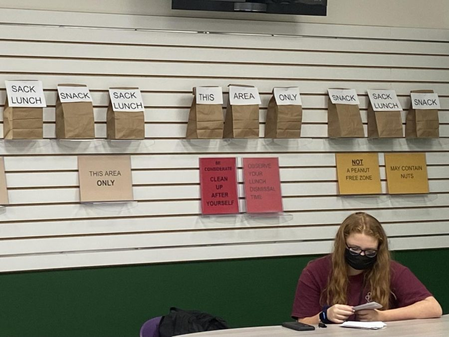 A students sits in the media center to study during lunch. Students are now able to eat lunch in the media center this year.