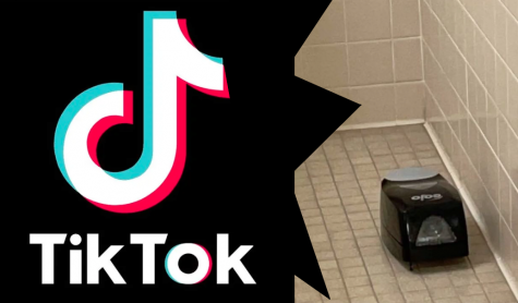 An online TikTok trend has gone viral in which students steal various items from their school.